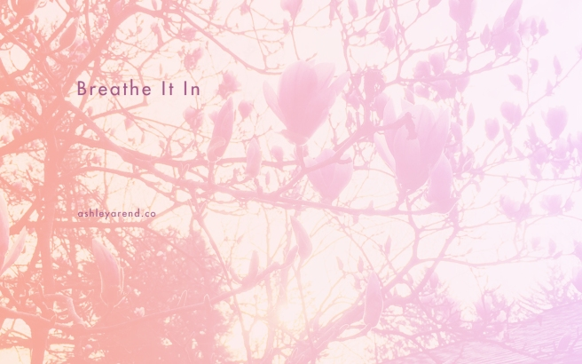 ashley_blog-breatheitin